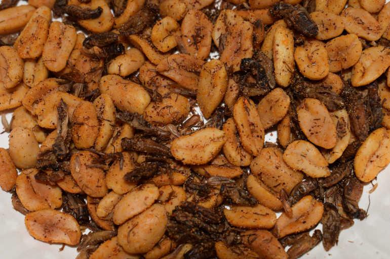 Uusi ruoka kotisirkkasuolapähkinät