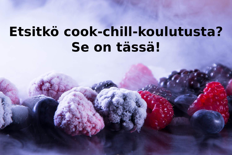 cook-chill-koulutus